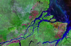 The mouth of the Amazon River