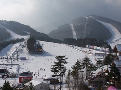 Dragon Valley (Alpensia) Ski Resort