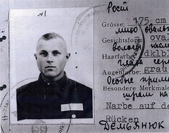Demjanjuk's Nazi ID card from Trawniki, which the trial experts said appeared to be authentic.[26] However, the card's authenticy has been called into question with investigators alleging it is a KGB forgery and with no record of another like it. [27][28]