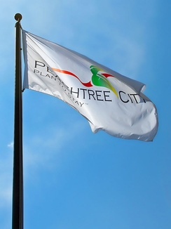 The official flag of Peachtree City, outside City Hall