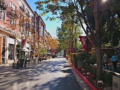 Tree-lined commercial streets characterize the district.