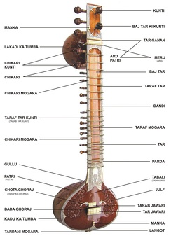 The anatomy of a sitar