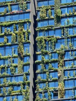 One Central Park, Sydney, which features vertical hanging gardens and sustainable green design