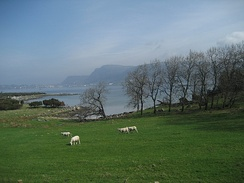 View of a farm on Mosterøy island
