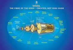 """Wool: Fibre of the gods, created – not man-made"" CSIRO marketing poster describing the benefits of wool"