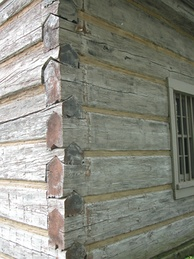 Details of cabin corner joint with squared off logs