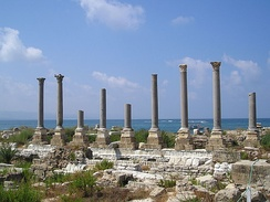 Remains of ancient columns at Al Mina excavation site – supposed palaestra