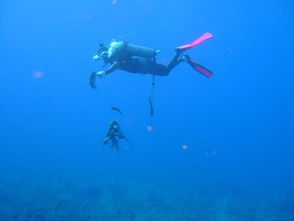 Подводная рыбалка с использованием аппаратов, позволяющих дышать под водой