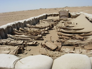Tarim basin ancient boats; they were used for burials