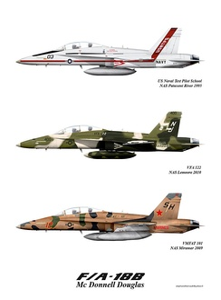 F/A-18B Hornets in various color schemes