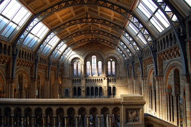 Central Hall of the Natural History Museum, London