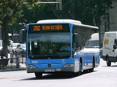 Blue Urban Bus