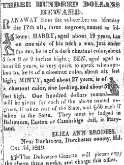 "Notice published in the Cambridge Democrat newspaper, offering a one hundred dollar reward (the equivalent of $3,000 in 2016 currency) for capture of each of the three escaped slaves ""Minty"" (Harriet Tubman) and her brothers Henry and Ben."