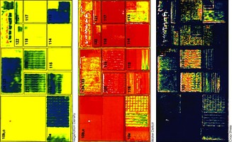 These three false-color images demonstrate the application of remote sensing in precision agriculture: The left image shows vegetation density and the middle image presence of water (greens / blue for wet soil and red for dry soil). The right image shows where crops are under stress, as is particularly the case in fields 120 and 119 (indicated by red and yellow pixels). These fields were due to be irrigated the following day.