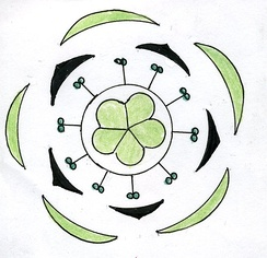 Floral diagram of Oxalis