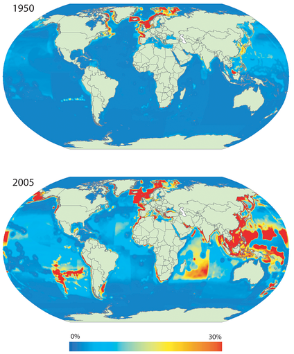 Primary production required (PPR) to sustain global marine fisheries landings expressed as percentage of local primary production (PP).Estimates of PPR, PP and PPR/PP computed per 0.5° latitude/longitude ocean cells. PPR estimates based on the [www.seaaroundus.org Sea Around Us] catch database and PP estimates derived from SeaWiFS's global ocean colour satellite data. The maps represent total annual landings for 1950 (top) and 2005 (bottom). Note that PP estimates are static and derived from the synoptic observation for 1998.[1]