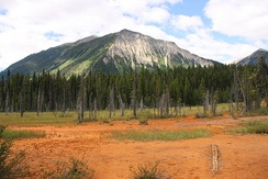 Iron-rich soil near Paint Pots in Kootenay National Park, Canada
