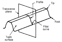 Profile of a spur gear