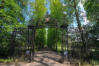 The Avenue of lime and cherry trees, and wrought iron gate to Queen's Road viewed from the Backs