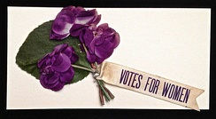 Votes for Women Parade flowers, Historical Society of Washington, D.C.