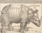 Rhinoceros, 1515, National Gallery of Art
