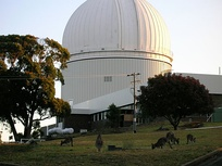"The Australian Astronomical Observatory in 2008 (then called the ""Anglo-Australian Observatory""). The staff tea room is in the lower left corner and the workshop to the right. The kangaroos in the foreground are a common sight at dusk."