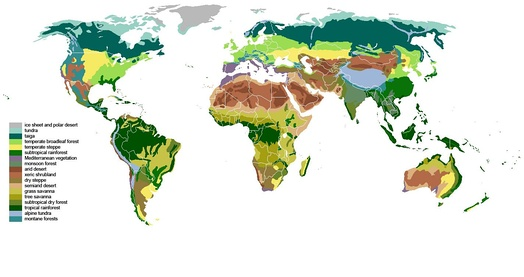 World biomes are based upon the type of dominant plant.