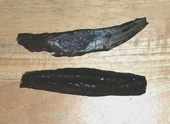 Two pieces (ari) of industrially-produced Maldive fish