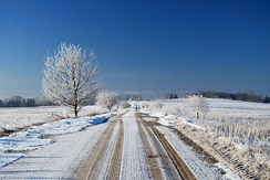 Winter landscape in Lithuania