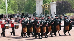 Pipes and Drums of the Irish Guards, 2009.