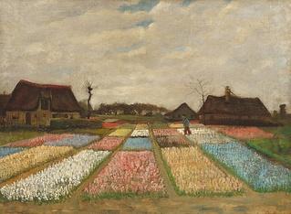 «Цветники в Голландии» кисти Ван Гога