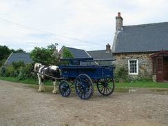 A horse-drawn carriage on Sark