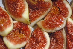 Figs, one of the most frequently mentioned fruits in the Bible.