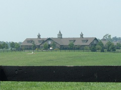 Kentucky's horse farms are world-renowned.
