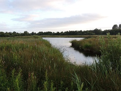 De Alde Feanen National Park