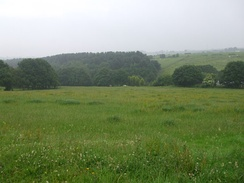 View towards Holme Wood from which the name of the settlement originated