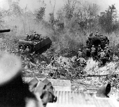 A combined arms operation in Vietnam. M113s clear the way through heavy bush while infantry follows.