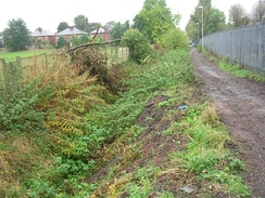 Looking west along Nico Ditch, near Levenshulme