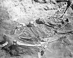 Skeletons unearthed at Lenape burial ground in Staten Island, the largest pre-European burial ground in NYC