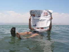 The Dead Sea located along Jordan's western border with Palestine and Israel, is the saltiest waterbody and the lowest point on earth.[85]