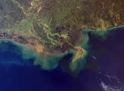 The Mississippi River Delta, showing the sediment plumes from the Mississippi and Atchafalaya Rivers, 2001.