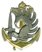 Anchored Winged Armed Dextrochere of French Army Marine Infantry Paratroopers