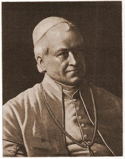 Pope Pius IX proclaimed two dogmas.