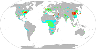 Nitrogen dioxide concentrations as measured from satellite 2002–2004