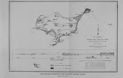 Black and white hand drawn survey map and elevation profile for Saint Paul Island and two neighboring islets: Walrus Island and Otter Island