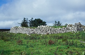 Ruins of the O'Davoren law school at Cahermacnaghten, County Clare