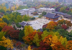 Deoksugung in autumn