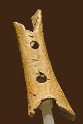 A bone flute which is over 41,000 years old.