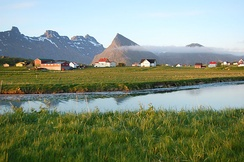 Agriculture is a significant sector, in spite of the mountainous landscape (Flakstad)