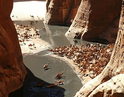 A view of the Guelta d'Archei in the Ennedi Plateau, which is similar to the gueltas of the Tibesti Mountains